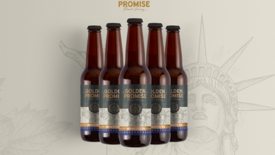 Portada Crowdfounding Golden Promise